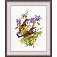 Colibry cross stitch Kit by Oven
