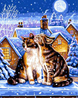 Winter Night Tapestry Canvas By Grafitec