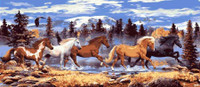 Running Horses Canvas By Grafitec