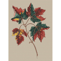 Acer Rubrum Cross Stitch Kit by Clarissa Badger