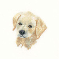 Golden Labrador Puppy Cross Stitch Kit For Beginners
