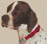 English Pointer Dog Cross Stitch Chart