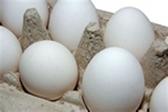 Store Brand Medium Eggs