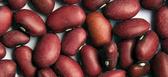 Kidney Beans -16 oz