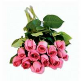 Dozen Roses Bunches - Pink