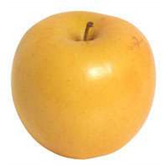Golden Apples - LB