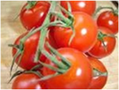 Tomatoes on the Vine - LB