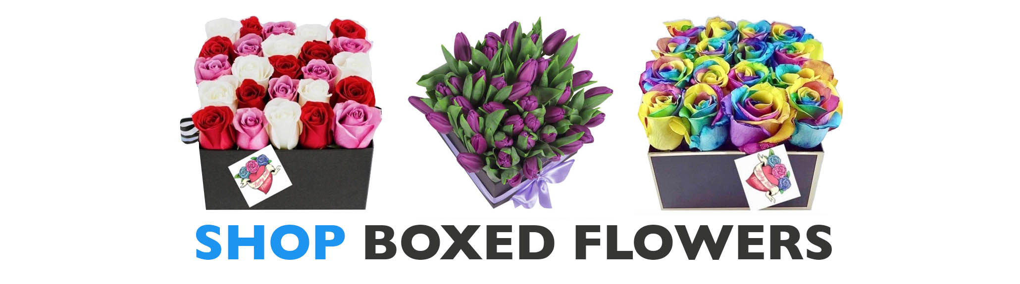 shopboxedflowers-78870.jpg