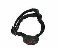 Chris Costa: Trainer - Headlamp