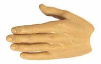 X-Series Nude: Caucasian Pale XP1 - Left Flat Hand