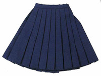 New School Female - Schoolgirl  Skirt