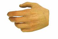Alien Professor - Left Relaxed Hand