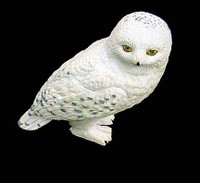 Harry Potter: Sorceror's Stone: Harry Casual - Hedwig The Owl