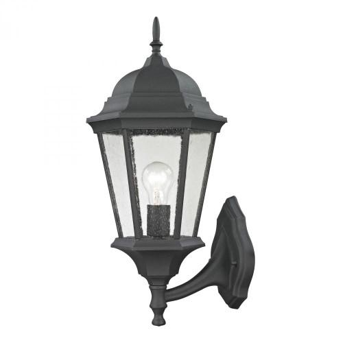 Temple Hill Coach Lantern In Matte Textured Black 9.5x20.5 8111EW/65