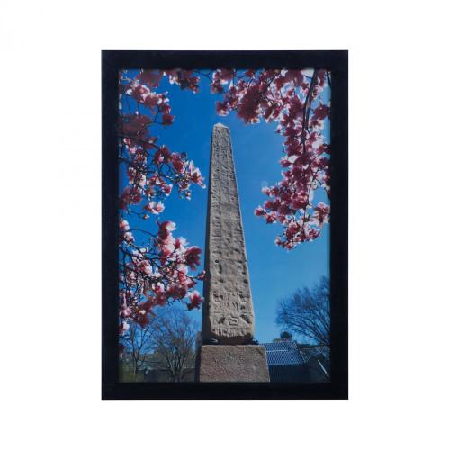 Central Park Obelisk 7011-1096