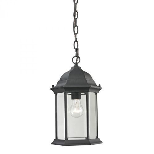 Spring Lake 1 Light Exterior Hanging Lamp In Matte Black 8601EH/65
