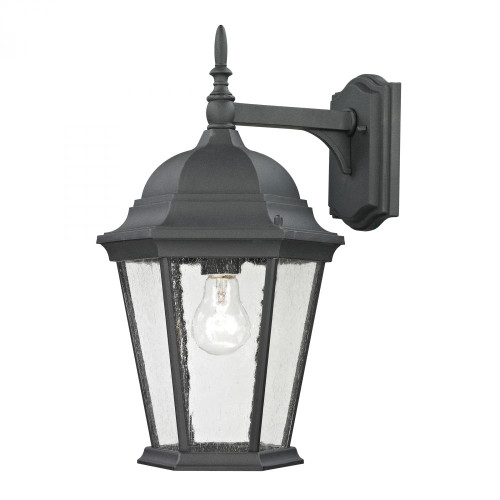Temple Hill Coach Lantern In Matte Textured Black 9.5x18 8101EW/65