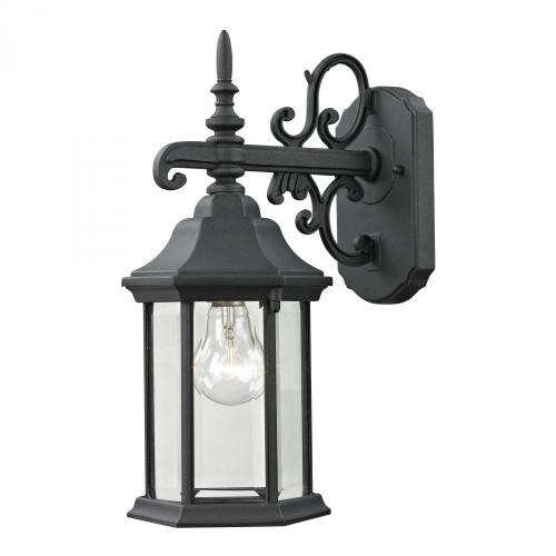 Spring Lake 1 Light Exterior Coach Lantern In Ma 6x15 8611EW/65