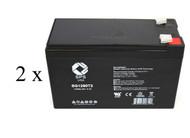 Minuteman A 750/2 high capacity battery set