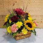 Country Harvest Basket (SCF17F23) Fall, Autumn, Thanksgiving Centerpieces and Flower arrangements from Savilles Country Florist with same day delivery to Buffalo, NY and the surrounding suburbs including Orchard Park, Hamburg, West Seneca, East Aurora, Blasdell