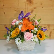 Garden Fresh Basket (SCF17E13)