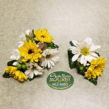 Sweet Sunshine Combo (COMBO104-SS)