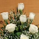 White Rose Sympathy Arrangement by Savilles Country Florist for delivery to Orchard Park, Hamburg, West Seneca, East Aurora, Buffalo, NY and surrounding suburbs.