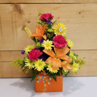 Set to Celebrate Birthday Bouquet (BD1) by Savilles Country Florist.  Birthday Flowers and Gifts delivered to Buffalo NY and the surrounding area including Orchard Park, West Seneca, Hamburg, and East Aurora