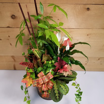 Autumn Abundance Planter (SCF17F30) Fall, Autumn, Thanksgiving Centerpieces and Flower arrangements and plants from Savilles Country Florist with same day delivery to Buffalo, NY and the surrounding suburbs including Orchard Park, Hamburg, West Seneca, East Aurora, Blasdell