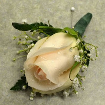 Boutonniere with Blush Rose
