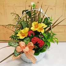 Orange Country Garden Basket SCF9502