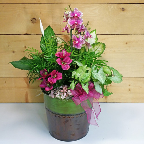 Passionate Peace Garden by Savilles Country Florist. Flower delivery to Orchard Park, Hamburg, West Seneca, East Aurora, Buffalo, NY and surrounding suburbs.
