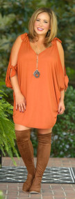 Take A Hay Ride Dress / Tunic - Rust