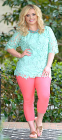 Brand New Day Lace Top - Mint