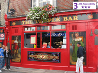 Private Accessible 4 hour Dublin Walking Tour