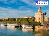 Private Accessible 8 hour Seville Guided Tour from Malaga