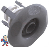 "Jet Internal, Waterway, Adjustable, Mini Jet, 2-5/8"" face diameter, Directional, 5 Scallop, Gray"