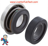 You are buying (BEST) Silicon Carbide Salt Resistant Verison of a PS-1000 Seal.  Silicon Carbide's exceptional wear and chemical resistance, enhanced dry running capability and high hardness means it is an excellent choice for aggressive, corrosive and high temperature environments.