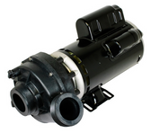 """Complete Pump, Sundance, Jacuzzi , 45 degree , 2.5HP, 230v, 2-spd, 48 frame, 2"""", 1 or 2 speed, 11.0A  NOTE: THIS PUMP WILL NOT FIT ANY OTHER APPLICATION EXCEPT JACUZZI OR SUNDANCE HOT TUBS WITH 45% DEGREE WET ENDS... DO NOT ORDER FOR ANY OTHER APPLICATIONS...."""