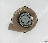 Armstrong 40404-003 117521 Draft Inducer Blower Motor