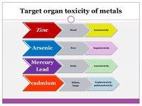 Heavy metals target organs
