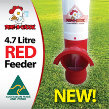 No training is required to get your hens to eat from the Dine a Chook Chicken Feeder with a RED base. Chickens love red! And you will love this bright addition to your chicken coop, with waste-reducing technology, as well!