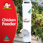 Chicken Feeder Dine a Chook