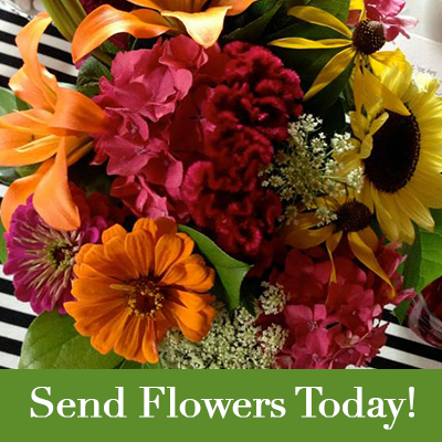 Whatever the Occasion, Send Flowers Today from The Flower Lady, Metro-Milwaukee's finest florest!!
