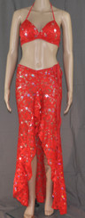 Red Flower Bling Bra and Long Dress