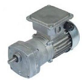 Bison Model 017-175-0096 Gear Motor 1/12 hp 17 RPM 230/460V 60/50HZ.