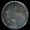 """REMO OCEAN DRUM¨, 16"""" Diameter, 2 1/2"""" Depth, Fish Graphic"""