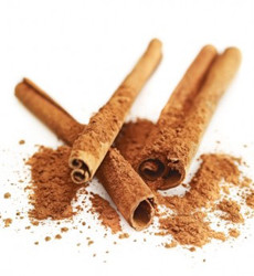 Fragrance Refill - Cinnamon