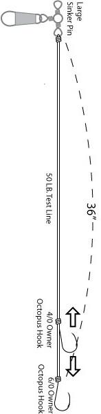008-040-vertical-2.jpg