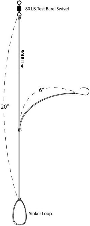 blackfish-singlehook-diag-300.jpg